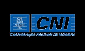 11 - CNI